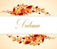 Feuilles d'érable dans le bouquet d'automne Photographie stock libre de droits