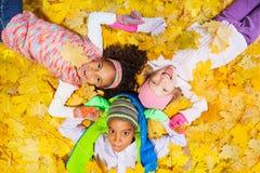 Feuilles d'érable de jaune orange Photo libre de droits
