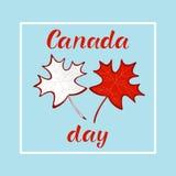 Feuilles d'érable rouge réalistes de JOUR HEUREUX de CANADA Photos stock
