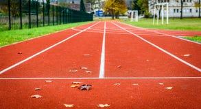 Feuilles d'érable sur la voie courante sportive dans le stade Photographie stock