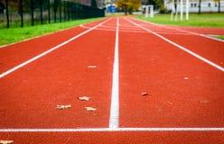 Feuilles d'érable sur la voie courante sportive dans le stade Photos libres de droits