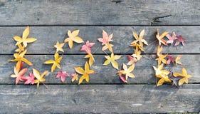feuilles d'amour sur une table en automne Photo stock
