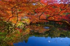 feuilles d'automne autour d'étang au temple de Daigoji, Kyoto images libres de droits