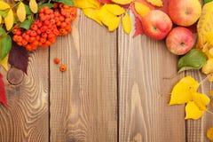 Feuilles d'automne, baies de sorbe et pommes au-dessus du fond en bois Image libre de droits