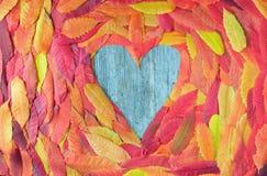Feuilles d'automne colorées dans une forme de coeur Photographie stock libre de droits