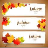 Feuilles d'automne colorées des bannières illustration libre de droits