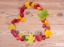 Feuilles d'automne colorées en forme de coeur Photo stock