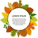 Feuilles d'automne colorées sous le label rond blanc Photographie stock libre de droits