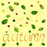 Feuilles d'automne décoratives sur la couleur Photographie stock