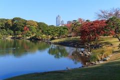 Feuilles d'automne dans des jardins de Hamarikyu, Tokyo Images libres de droits