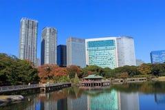 Feuilles d'automne dans des jardins de Hamarikyu, Tokyo Photos stock