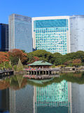 Feuilles d'automne dans des jardins de Hamarikyu, Tokyo Images stock