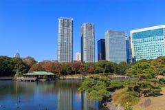 Feuilles d'automne dans des jardins de Hamarikyu, Tokyo Photographie stock libre de droits