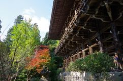 Feuilles d'automne dans le temple Images libres de droits