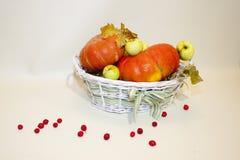 Feuilles d'automne de pommes de potiron Photographie stock