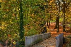 Feuilles d'automne en parc de ville images stock