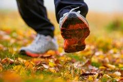 Feuilles d'automne et espadrilles Photographie stock