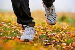 Feuilles d'automne et espadrilles de marche Photographie stock libre de droits