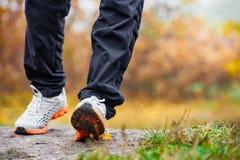 Feuilles d'automne et espadrilles de marche Image libre de droits