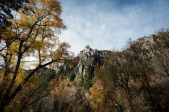 Feuilles d'automne et formation de roche dans le comté d'Utah photographie stock libre de droits