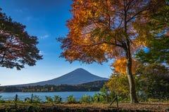 Feuilles d'automne et Fuji image stock
