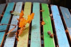 Feuilles d'automne et glands oranges sur la table en bois rayée colorée Photos libres de droits