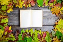Feuilles d'automne et vieux livre sur la table image libre de droits
