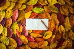 Feuilles d'automne, feuille de papier, crayon images stock