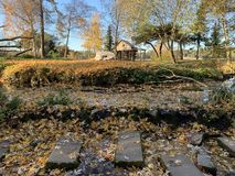 Feuilles d'automne flottant sur l'eau photo stock