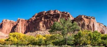 Feuilles d'automne Fruita en parc national de récif de capitol, Utah Image stock