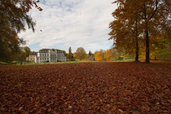 Feuilles d'automne - Herbstlaub Photographie stock