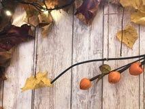 Feuilles d'automne naturelles colorées rouge-brun de vue et de jaune, érable sur le fond des conseils en bois Le fond Texture photo libre de droits