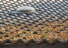 Feuilles d'automne sèches sur un toit carrelé images libres de droits