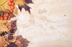 Feuilles d'automne sur le vieux papier Photos libres de droits