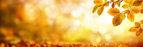 Feuilles d'automne sur miroiter le fond brouillé image stock
