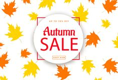 Feuilles d'Autumn Sale Background With Colorful Images libres de droits