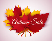 Feuilles d'Autumn Sale Background With Colorful Photos libres de droits