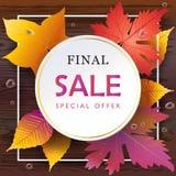 Feuilles d'Autumn Sale Fall, vue supérieure en bois de table Photo stock