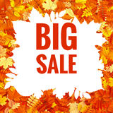 Feuilles d'Autumn Sales Banner With Colorful ENV 10 illustration stock