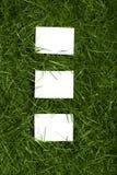 feuilles d'herbe Images libres de droits