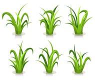 Feuilles d'herbe réglées Images stock