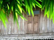 Feuilles de bambou avec le fond en bois Images stock