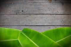 Feuilles de banane sur en bois Image libre de droits
