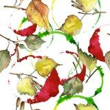 Feuilles de bouleau vert et jaune d'automne Feuillage floral de jardin botanique d'usine de feuille Modèle sans couture de fond illustration libre de droits