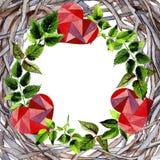 Feuilles de cadre rose dans un style d'aquarelle Photo stock