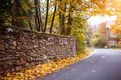 Feuilles de chute à la route en Autumn Time Image libre de droits