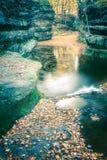 Feuilles de chute au nid de vanneaux, Baraboo, le Wisconsin, Etats-Unis images libres de droits