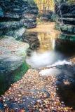 Feuilles de chute au nid de vanneaux, Baraboo, le Wisconsin, Etats-Unis photos stock