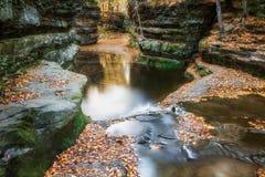 Feuilles de chute au nid de vanneaux, Baraboo, le Wisconsin, Etats-Unis photo stock
