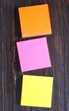 Feuilles de couleur Photographie stock libre de droits